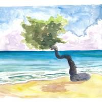 Tropical Eagle Beach in Aruba Dutch Caribbean Art Prints & Posters by M Bleichner