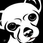 Chihuahua Black and White Portrait Prints & Posters