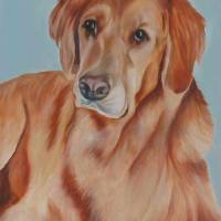 Marley *** Art Prints & Posters by Susan Martell