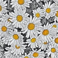 Deb's Daisies Art Prints & Posters by The Split Window