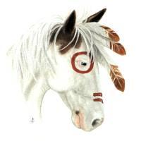Majestic Medicine Hat Horse by Bihrle Art Prints & Posters by AmyLyn Bihrle