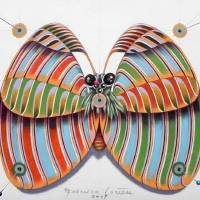Butterfly Art Prints & Posters by federico cortese