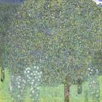 Gustav Klimt's Rosebushes under the Trees (1905) Prints & Posters