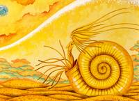 Fantasy Fossil picture - Memory of ammonite