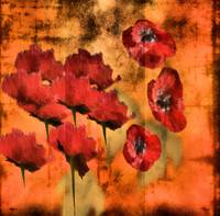 Rustic Poppies Oil Painting