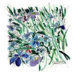 """Blue Iris in the Garden"" by RDRiccoboni"