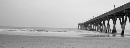 johnny mercer pier