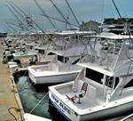 Cape May Sportfishing Fleet