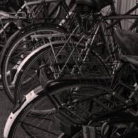 Bikes Art Prints & Posters by kristy carlile