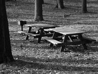 black and white picnic tables