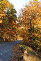 Fall at Kennesaw Mountain, GA