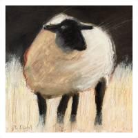 """Suffolk Sheep"" by whimrab"