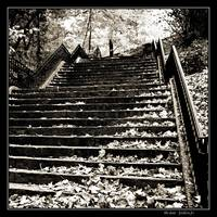 Riverside Park Stairs