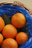 A basket of Oranges, Greece