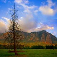 Mount Si in North Bend, Washington Art Prints & Posters by Andrew E. Larsen