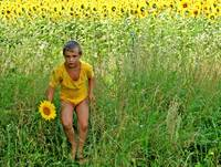 Boy with sunflower