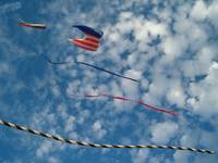 kites over oc