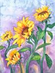 Sunny Sunflowers by Kristen Fox
