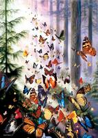 Butterfly Woods