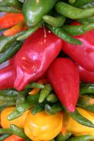HGP Image #25 Peppers in the Market