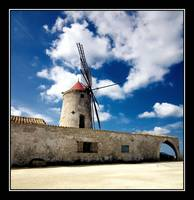 The Salt Mill
