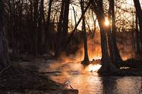 Sunrise on the River: Fog and Light 3