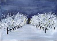 Fruit Trees under Snow