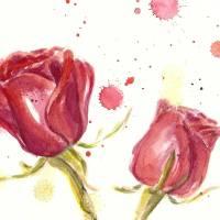 11March08-1b Art Prints & Posters by Anita Davies