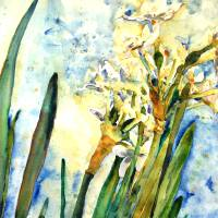 """Paperwhites Sky, Floral Painting"" by schulmanart"