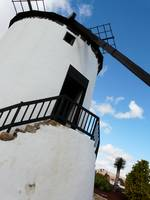 White & Black Windmill