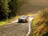 Wales Rally GB - Crychan - 32