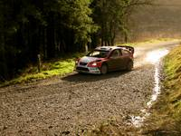 Wales Rally GB - Crychan - 33