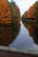 Fall on the Canal