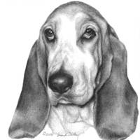 Memorial Portrait of Gretel, Basset Hound