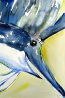 Sailfish head 1788x2673