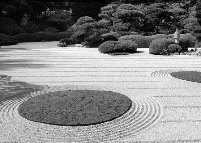 Zen Garden By Filmore Rose