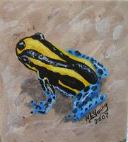 Yellow & Blue Frog