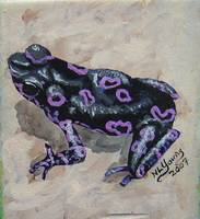 Black & Purple Frog