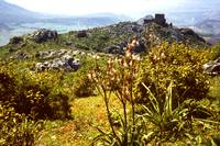 View towards the Crusader Castle, Acrocorinth by Priscilla Turner