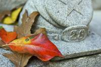 Autumn Leaves on Gettysburg Monument