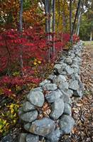 Stone Fence in Autumn on Seminary Ridge