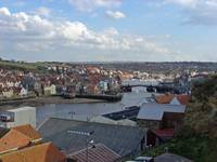 Whitby Rooftops  (15508-RDA)