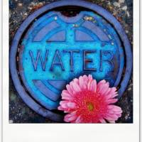 water Art Prints & Posters by Leslie F. Miller