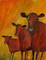 three dreamy cows