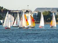 Sailboats in Boston Harbor