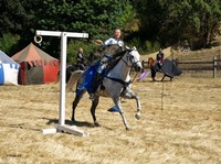 Medieval Ring Joust- Equine-horse