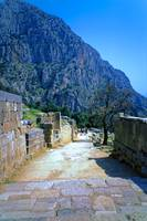 The Sacred Way in Springtime, Delphi, Greece 2003 by Priscilla Turner