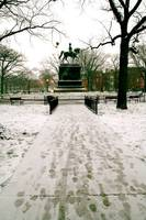 snow walk in logan circle