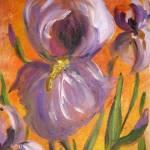 """""""iris"""" by yvonneayoub"""