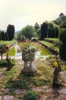 Gardens at Mapperton, Dorset, England